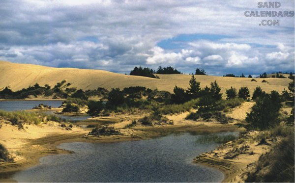 Coos Bay Oregon Dunes